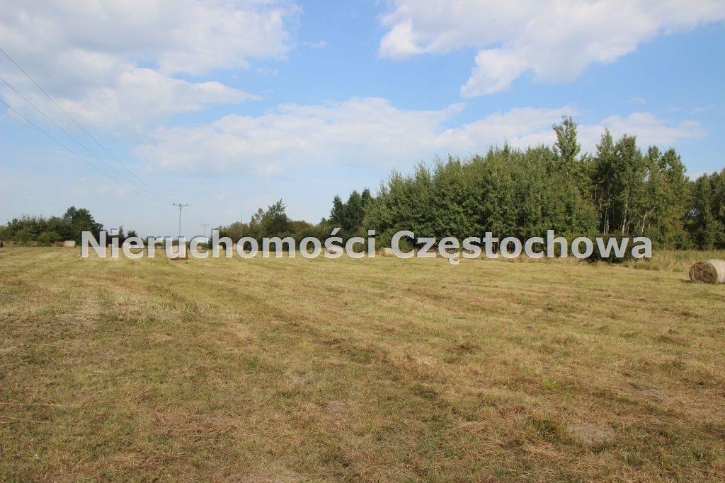 Działka inna na sprzedaż Kamienica Polska  4000m2 Foto 1