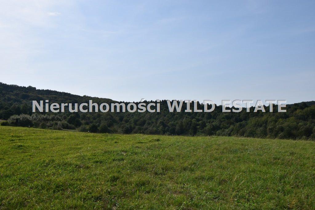 Działka rolna na sprzedaż Baligród, Zahoczewie  180184m2 Foto 1