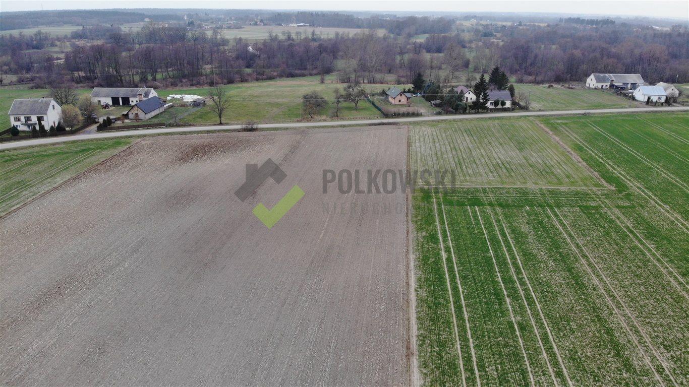 Działka rolna na sprzedaż Strzeszewo  3000m2 Foto 7