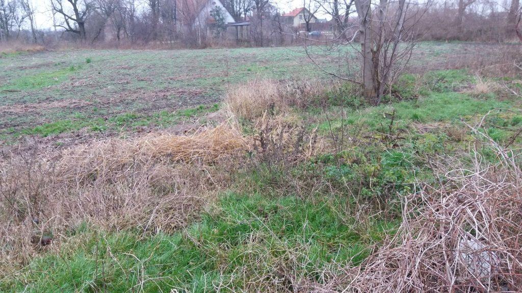 Działka budowlana na sprzedaż Zielątkowo  23900m2 Foto 1
