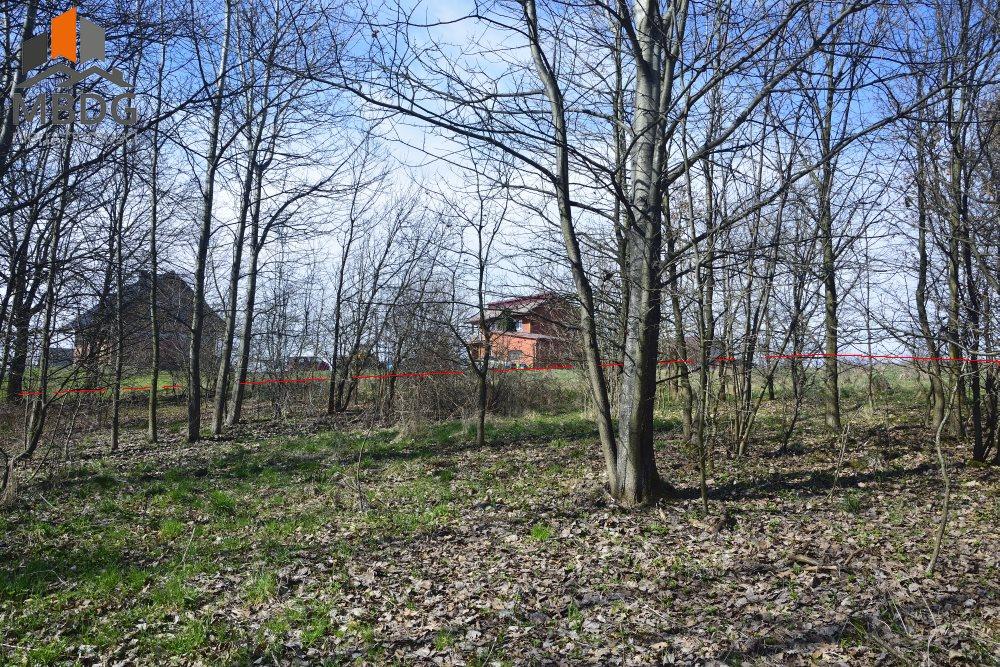 Działka siedliskowa na sprzedaż Brodła  14100m2 Foto 5