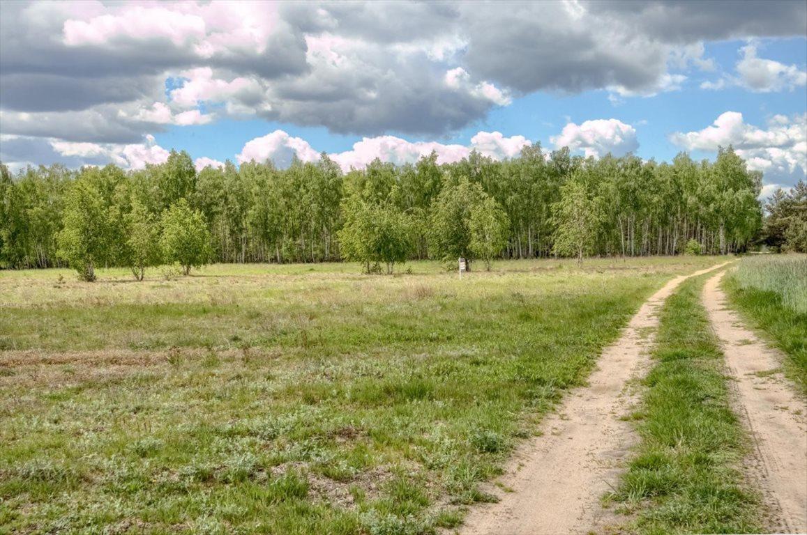 Działka budowlana na sprzedaż Arciechów, Myszyniec, Opolska  756m2 Foto 1