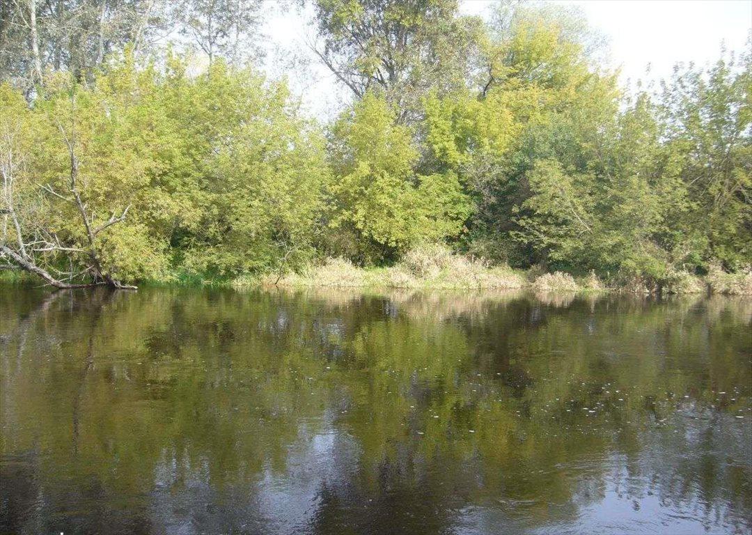 Działka leśna na sprzedaż Grudunki  140100m2 Foto 6