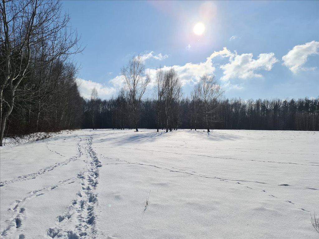 Działka rekreacyjna na sprzedaż Natolin, Nowosolna  4718m2 Foto 1