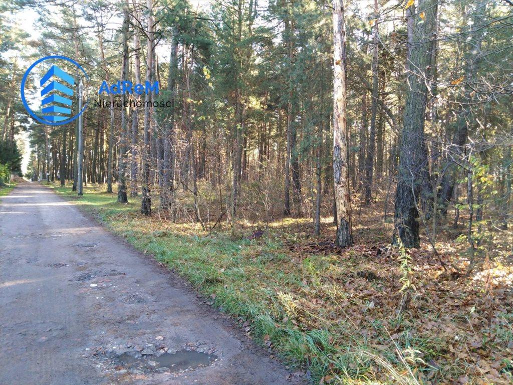 Działka leśna na sprzedaż Jeziórko, Świerkowa  1000m2 Foto 3