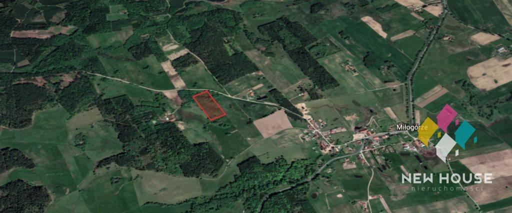 Działka rolna na sprzedaż Miłogórze  19700m2 Foto 9