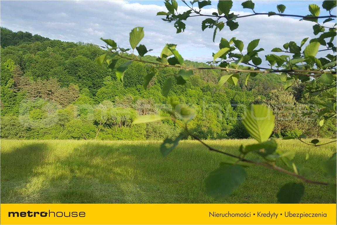 Działka rolna na sprzedaż Średnia Wieś, Lesko  10300m2 Foto 12