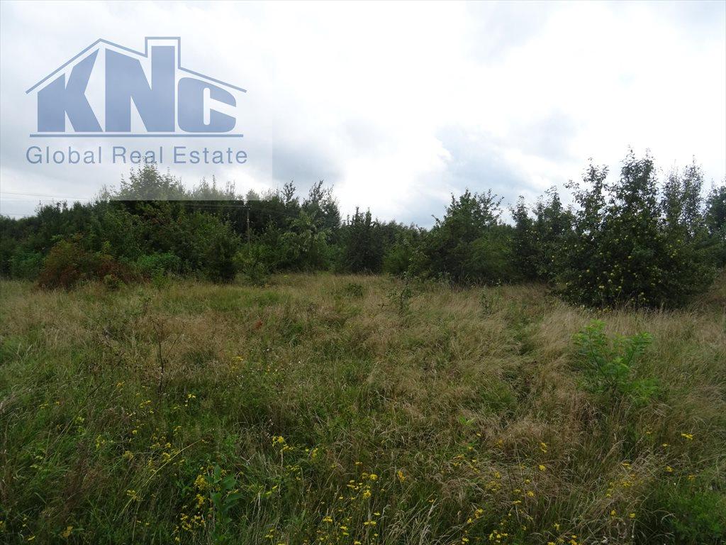 Działka rolna na sprzedaż Korytków  10800m2 Foto 8