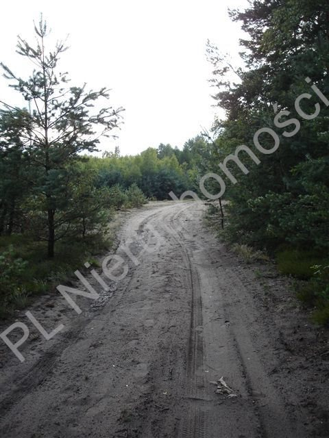 Działka leśna na sprzedaż Ołdakowizna  7774m2 Foto 5