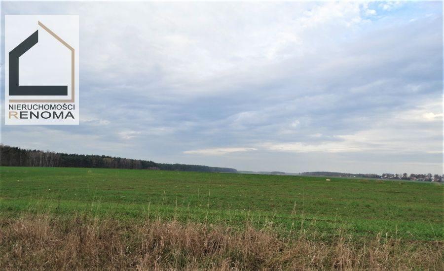 Działka rolna na sprzedaż Rościnno, , Rościnno, Skoki, Wągrowiec, Poznań  40982m2 Foto 4