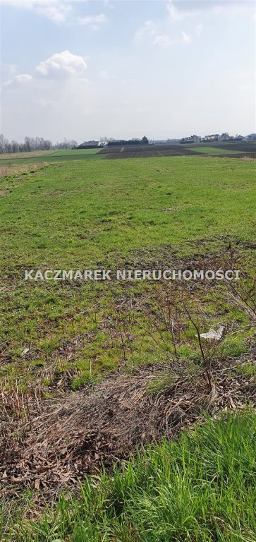 Działka budowlana na sprzedaż Jankowice, Żubrów  5273m2 Foto 8