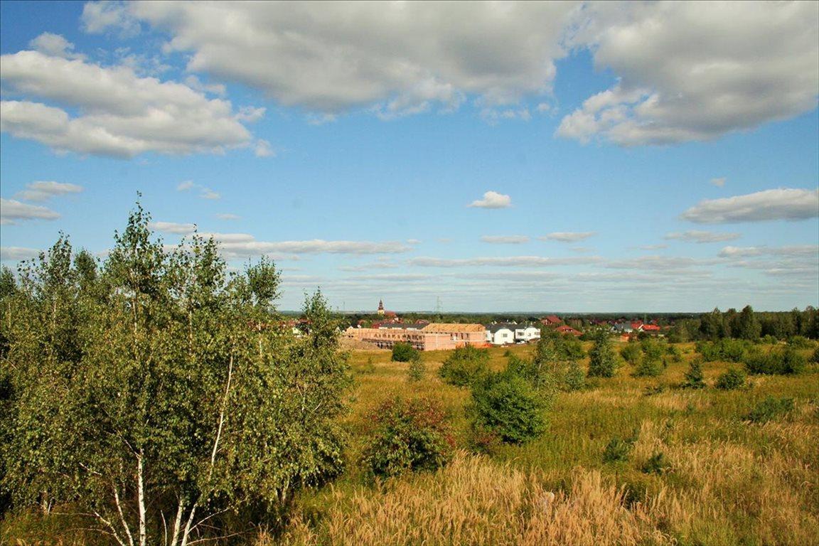 Działka rolna na sprzedaż Wilkszyn, Miękinia  2396m2 Foto 4
