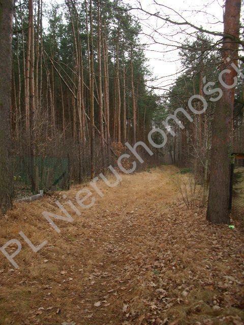 Działka leśna na sprzedaż Lesznowola  1918m2 Foto 7