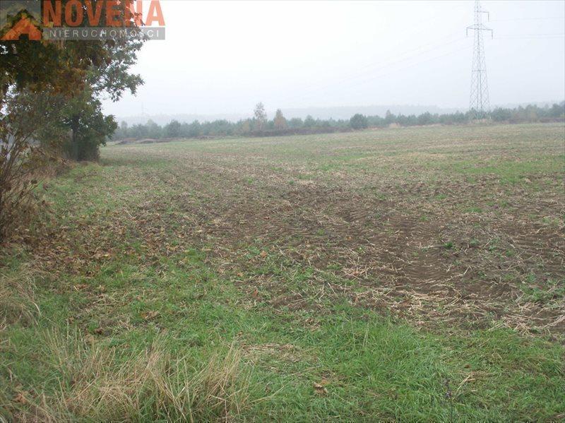 Działka rolna na sprzedaż Radecz, Radecz  10000m2 Foto 1