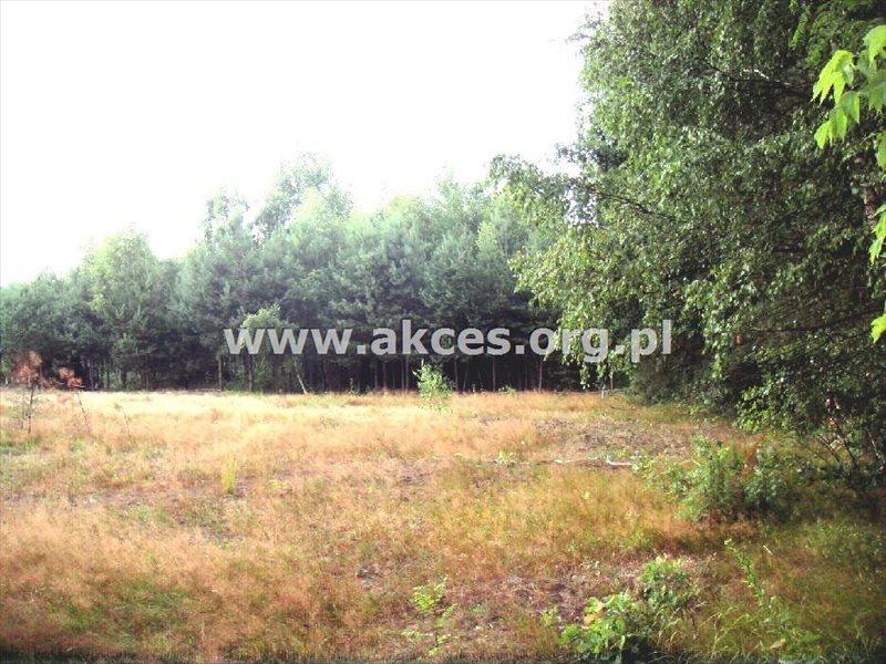 Działka budowlana na sprzedaż Korzeniówka  12850m2 Foto 4