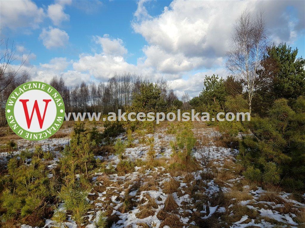 Działka siedliskowa na sprzedaż Czosnów, Łosia Wólka, Łosia Wólka  12300m2 Foto 5