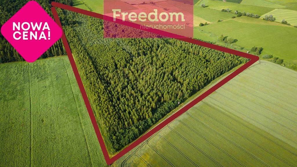Działka leśna na sprzedaż Parys  93000m2 Foto 1
