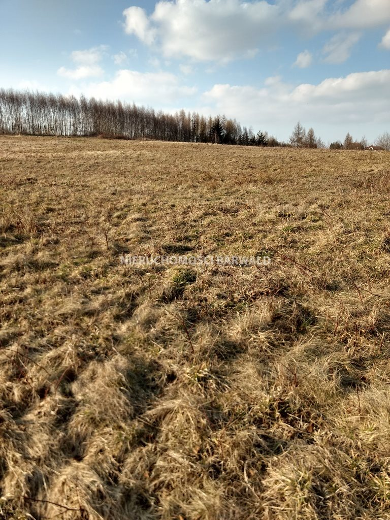 Działka rolna na sprzedaż Podolany  3177m2 Foto 8