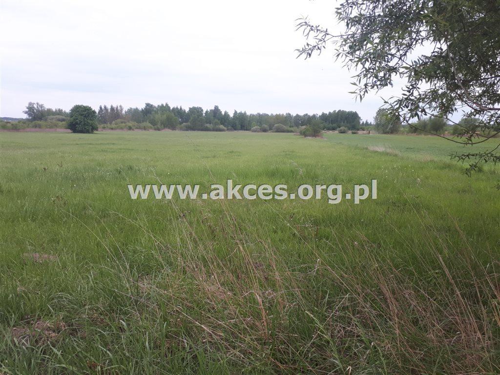 Działka rolna na sprzedaż Ostrowiec  40000m2 Foto 2