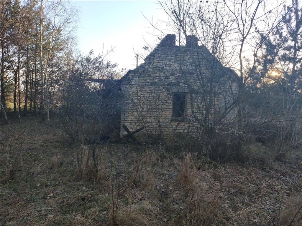 Działka budowlana na sprzedaż Borek, Wartkowice  11200m2 Foto 6