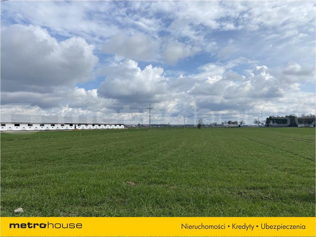 Działka rolna na sprzedaż Rogoźnica, Międzyrzec Podlaski  14100m2 Foto 8