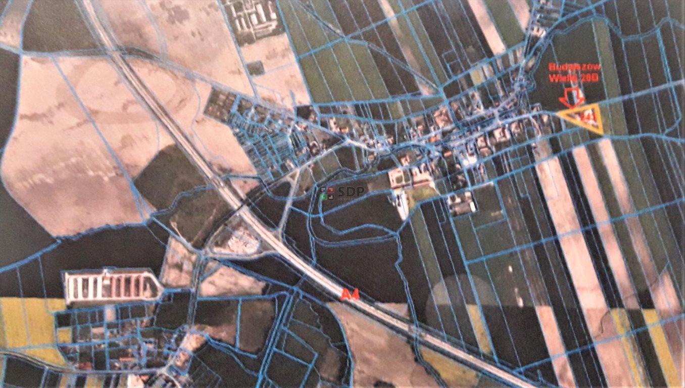 Działka inwestycyjna na sprzedaż Budziszów Wielki  9276m2 Foto 6