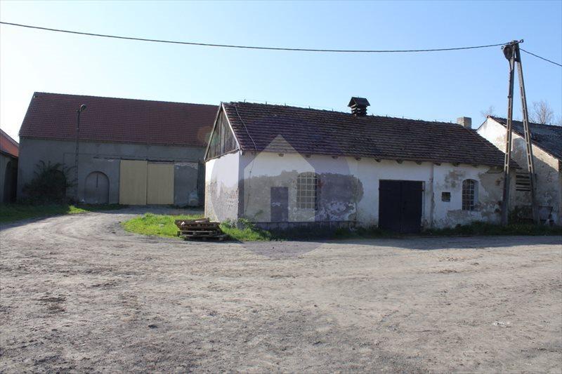 Działka przemysłowo-handlowa na sprzedaż Marcinowice  38015m2 Foto 4