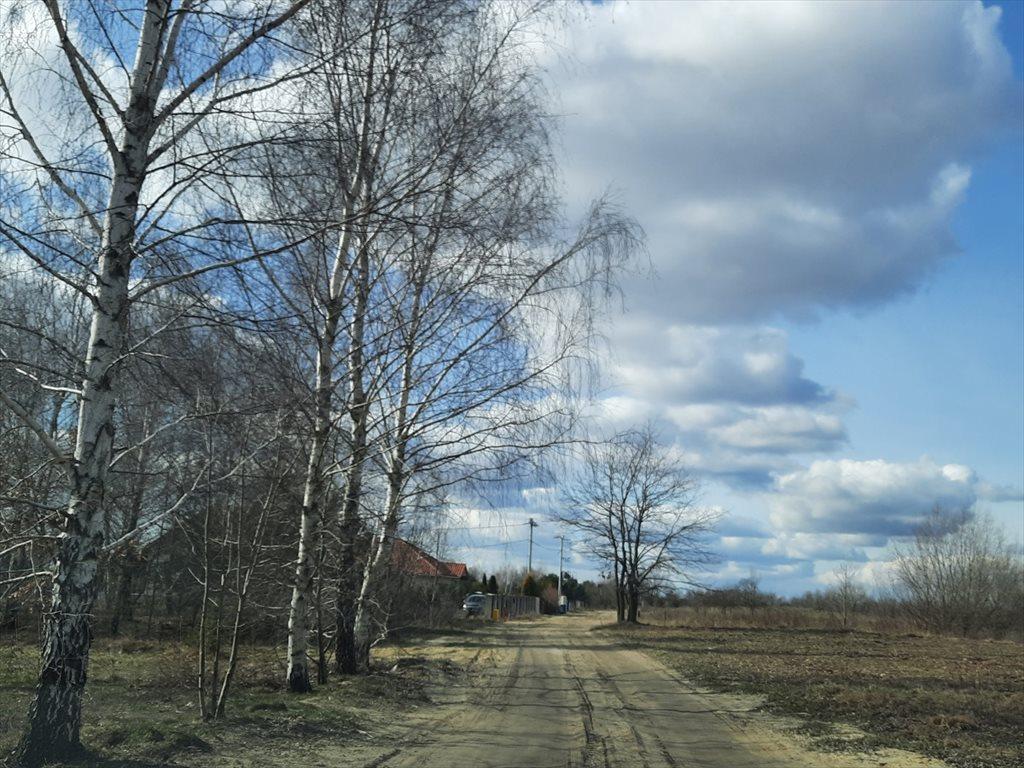 Działka budowlana na sprzedaż Powązki  1500m2 Foto 8