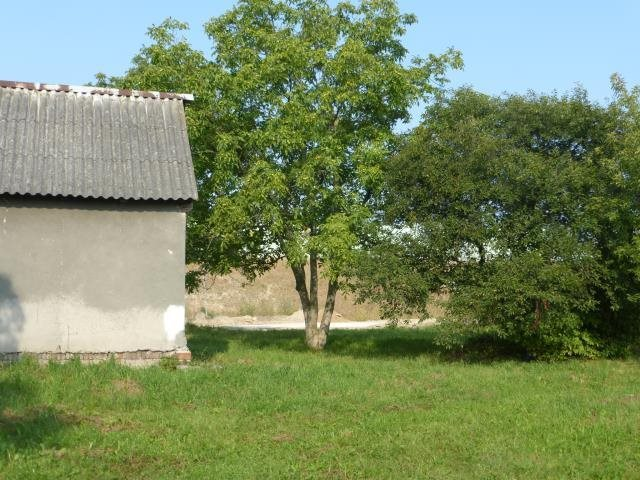 Działka budowlana na sprzedaż Sławno, Sławno  25309m2 Foto 11
