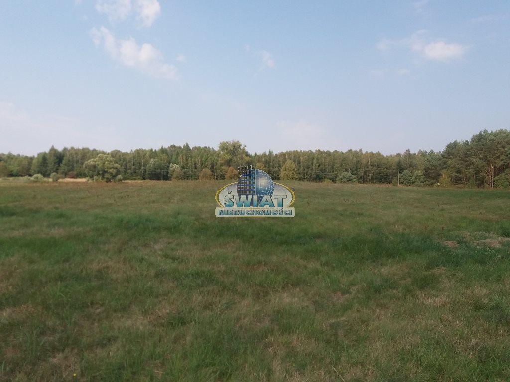 Działka rolna na sprzedaż Dobrzany  11600m2 Foto 4