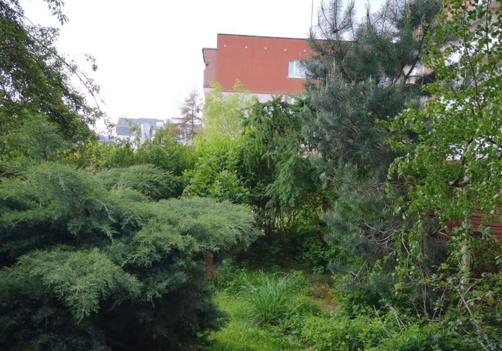 Mieszkanie czteropokojowe  na sprzedaż Szczecin, bukowe, Seledynowa  64m2 Foto 2