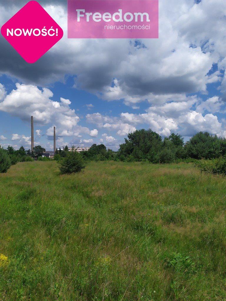 Działka inna na sprzedaż Głowno, Polna  4331m2 Foto 13