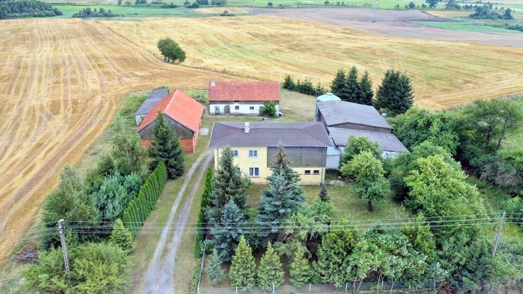 Działka siedliskowa na sprzedaż Czerwony Dwór  5410m2 Foto 4