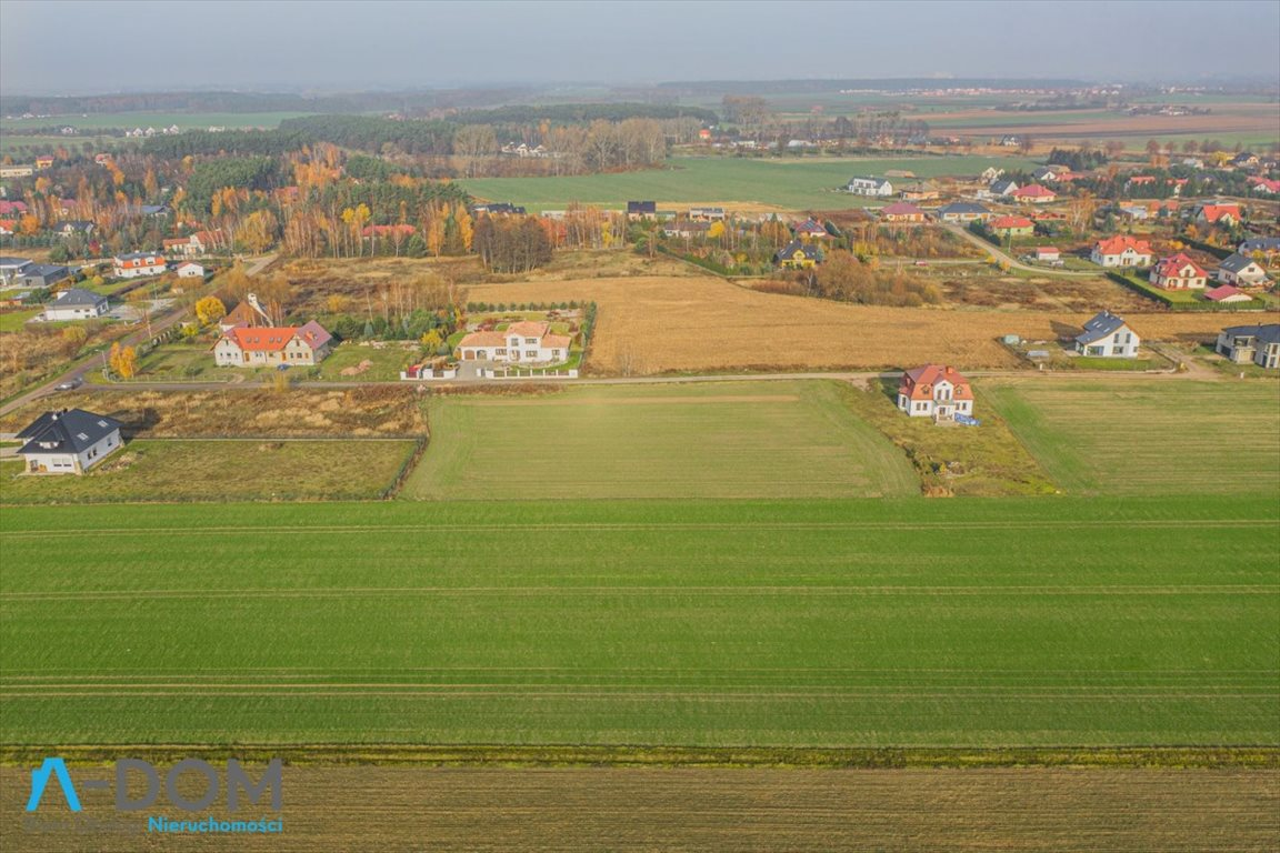 Działka budowlana na sprzedaż Więckowice  3871m2 Foto 4