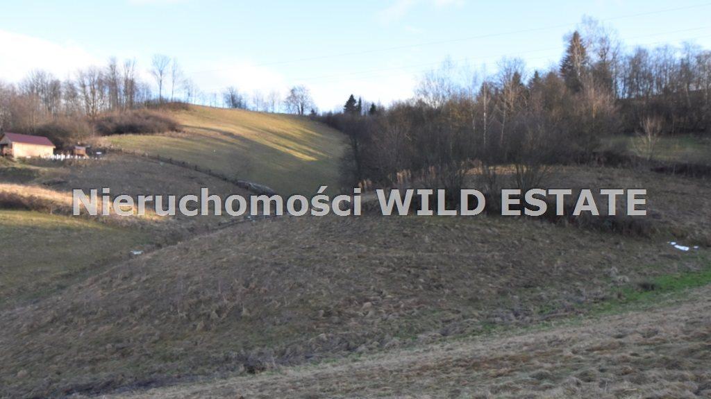 Działka rolna na sprzedaż Solina, Zawóz  6012m2 Foto 4