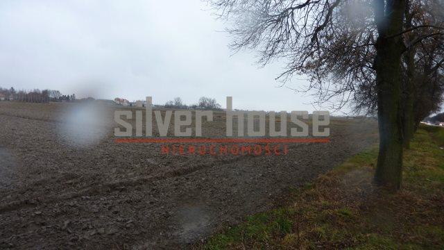 Działka przemysłowo-handlowa na sprzedaż Płochocin  16000m2 Foto 2