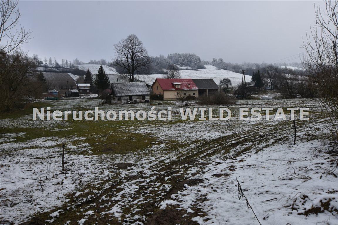 Działka rolna na sprzedaż Olszanica, Paszowa  3891m2 Foto 4