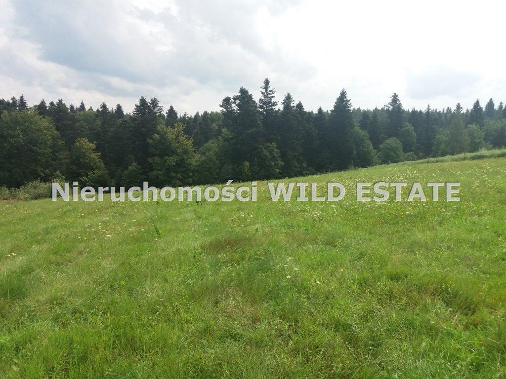 Działka rolna na sprzedaż Solina, Werlas  5011m2 Foto 1