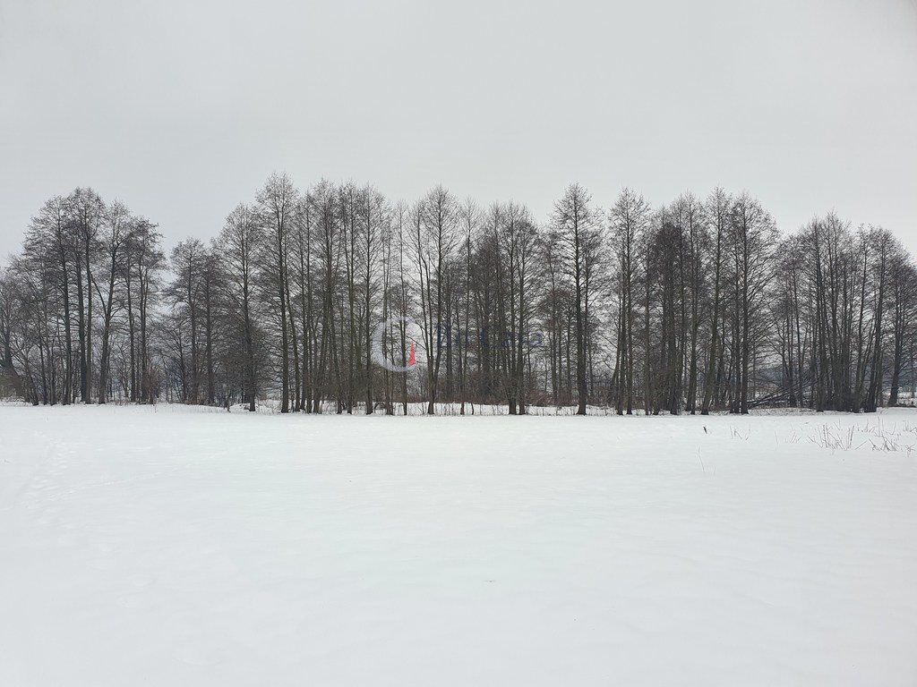 Działka budowlana na sprzedaż Harsz, Nowy Harsz  53000m2 Foto 4