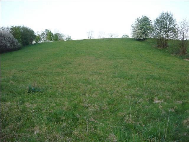 Działka rolna na sprzedaż Bieniasze, Wieś Nad Jez. Bieniaskim, Bieniasze  14800m2 Foto 2