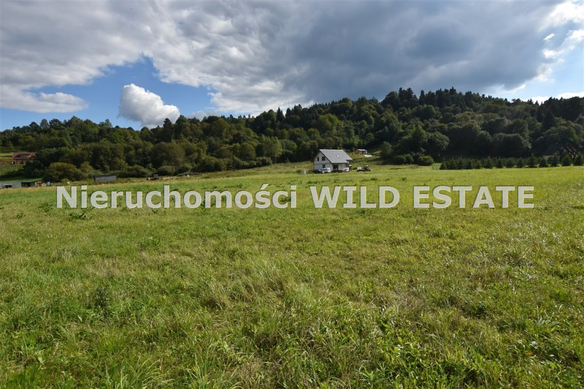 Działka rolna na sprzedaż Lesko, Huzele  3025m2 Foto 1