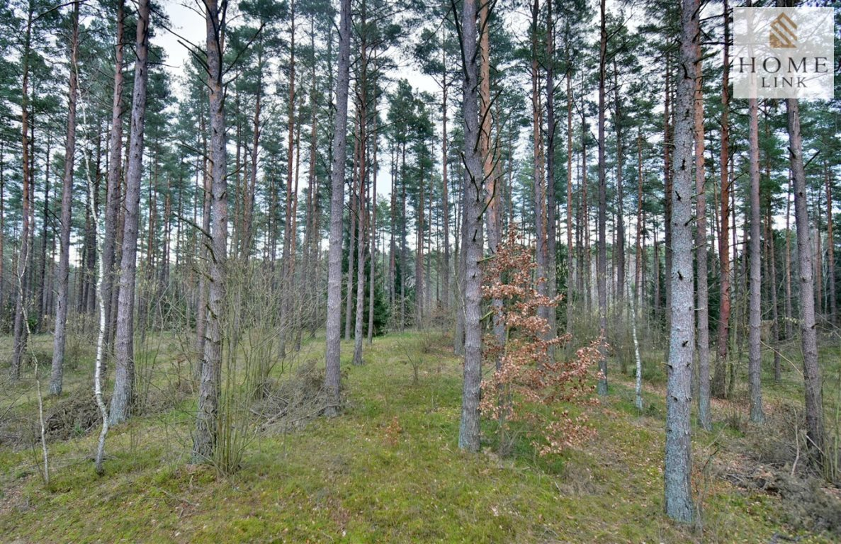 Działka leśna na sprzedaż Warkały  47800m2 Foto 9