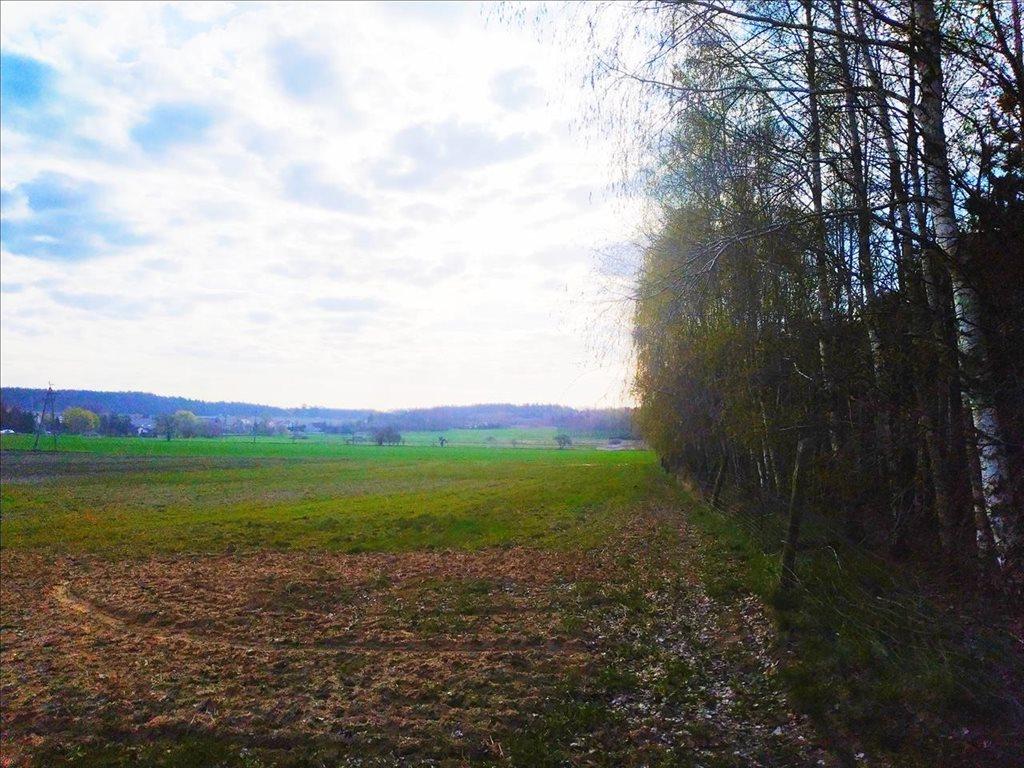 Działka rolna na sprzedaż Rościsławice, Oborniki Śląskie  15861m2 Foto 2