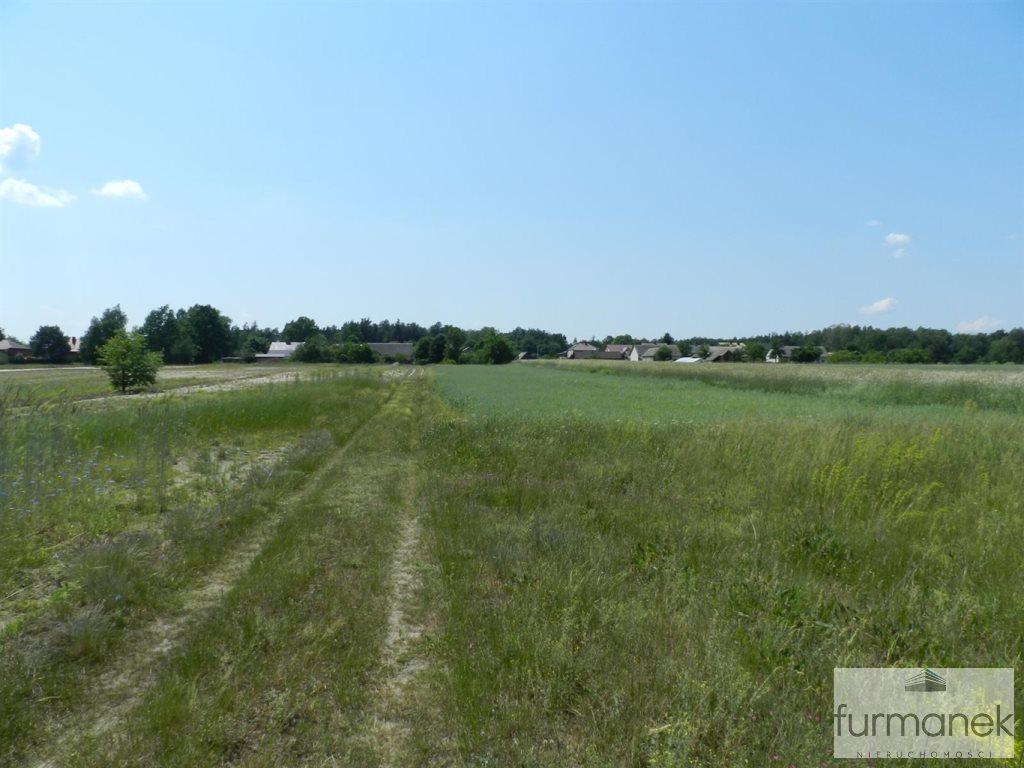 Działka rolna na sprzedaż Gózd Lipiński  11400m2 Foto 7