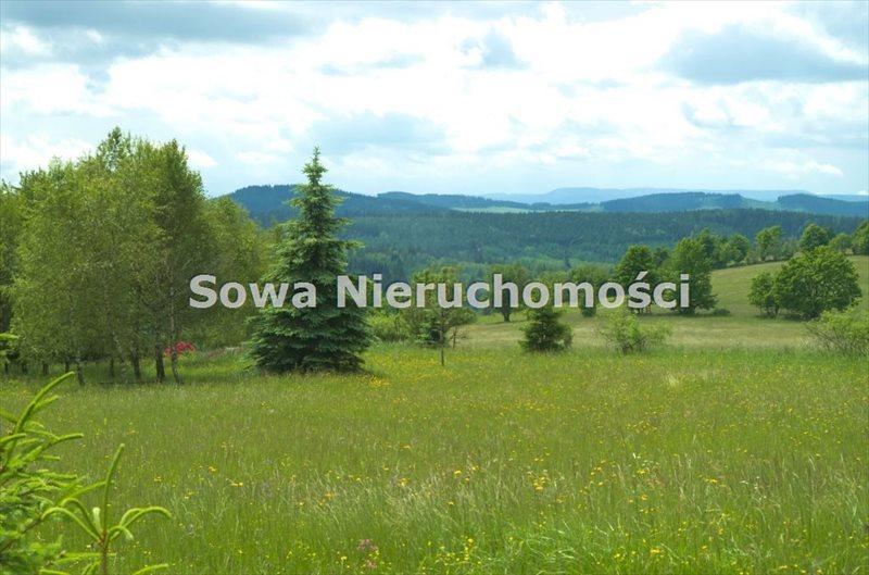 Działka budowlana na sprzedaż Sierpnica  1000m2 Foto 7