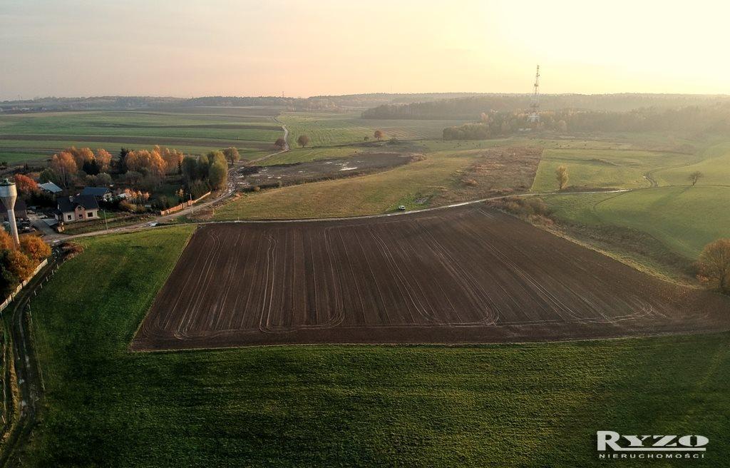 Działka rolna na sprzedaż Przęsocin  12800m2 Foto 2