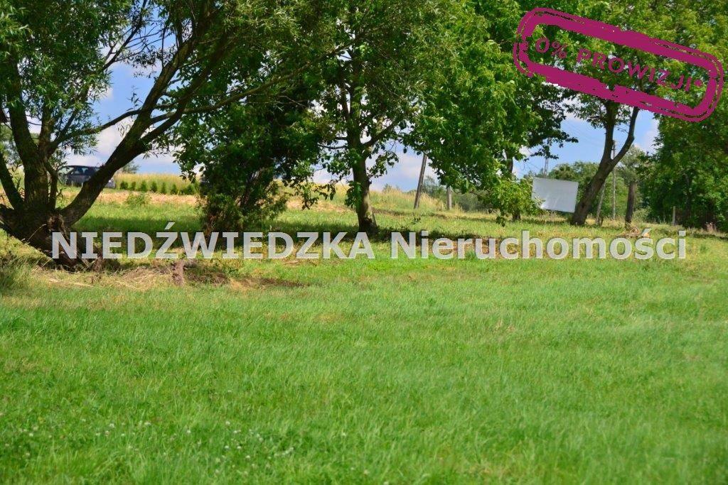 Działka budowlana na sprzedaż Mikołów, Mokre  12507m2 Foto 6