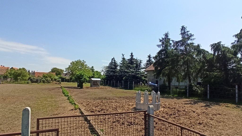 Działka budowlana na sprzedaż Kunice  1500m2 Foto 7