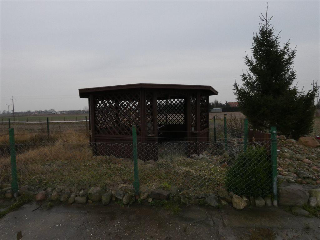 Działka rolna na sprzedaż Sicienko  20000m2 Foto 4