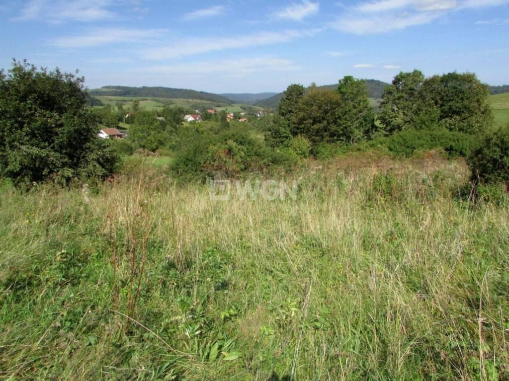 Działka inwestycyjna na sprzedaż Mchawa, Mchawa, Mchawa  1613m2 Foto 5